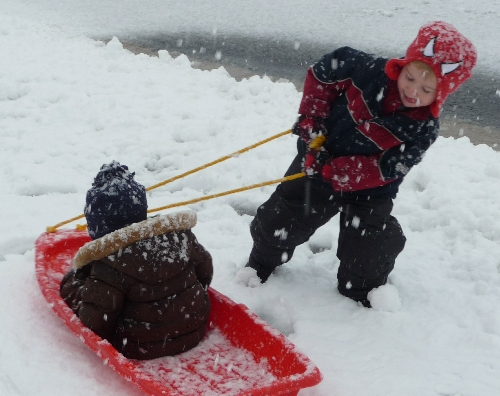 pulling sled in snow