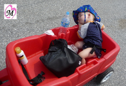 baby sleeping in wagon way home from beach