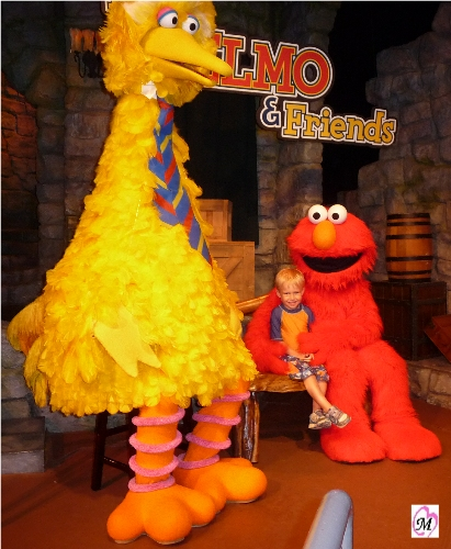 Elmo & Friends - Busch Gardens