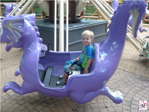 4 year old riding ride at busch gardens