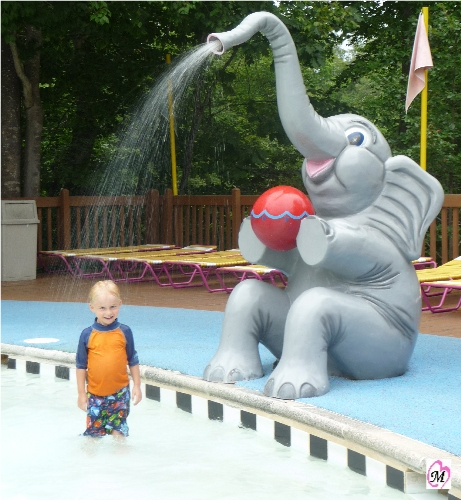 Elephant Water Spray